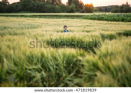 Little boy in cyan T-shirt stands in the rye field on the sunset background. He screams and looks into the camera. Outdoors. Horizontal.