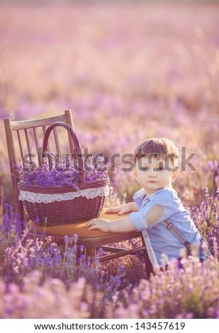 Little boy in lavender field. Outdoor summer portrait. - stock photo