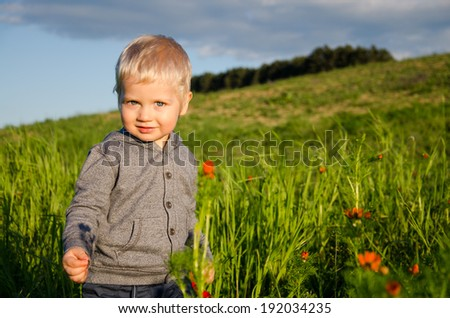 Little boy in the green field. - stock photo