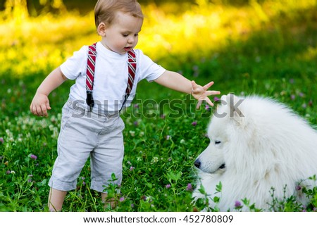 Little boy is standing with a white dog summer day in the park. Samoyed dog with boy