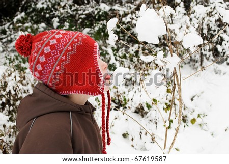 Little boy licking snow on a branch - stock photo