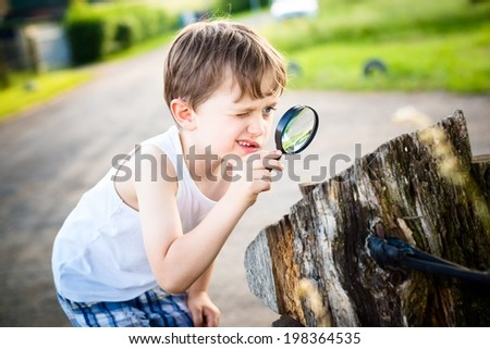 little boy looks at a tree trunk through a magnifying glass - summertime - stock photo