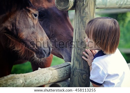 Little boy looks at horse