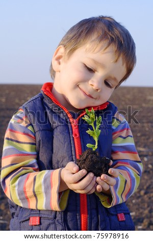 Little boy on field holding the plant