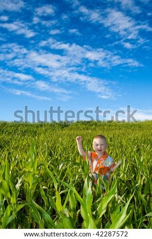little boy on green field - stock photo