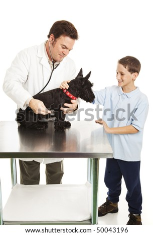Little boy pets his dog as the veterinarian examines it.  Isolated on white. - stock photo