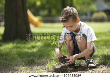 Little boy planting - stock photo