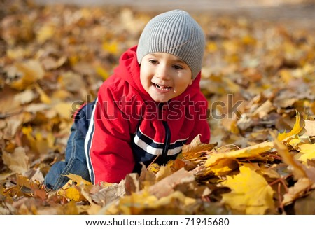 Little boy played with fallen autumn leaves
