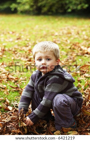 little boy playing in the leafes - stock photo