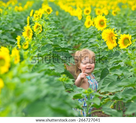 Little boy playing on the sunflower field - stock photo