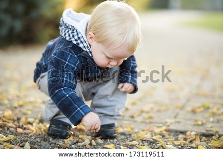 Little boy playing outdoor with autumn leaves.