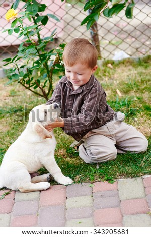 little boy playing with a white Labrador puppy. - stock photo