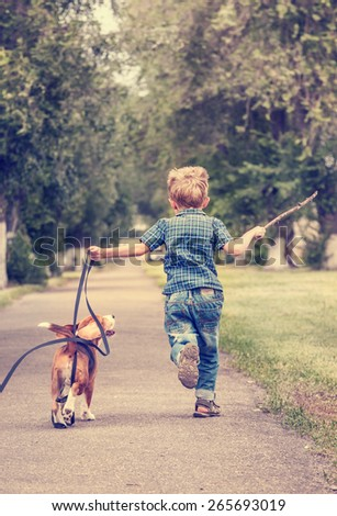 Little boy playing with his beagle puppy - stock photo