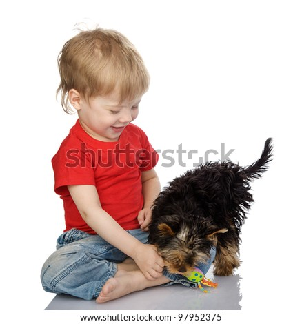 little boy playing with puppy. isolated on white background - stock photo