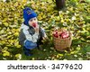 little boy posing outdoors with apples - stock photo