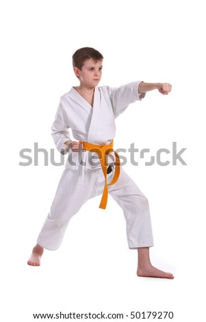 Little boy practice karate isolated on white background