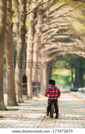 Little boy riding bicycle in a park - stock photo