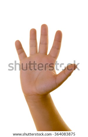 Little boy's hand making number five, wave or stop sign isolated on white. Caucasian middle eastern male hand.