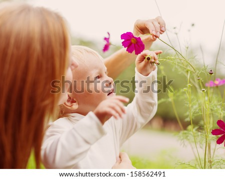 Little Boy Smelling Flower in Summer Day - stock photo