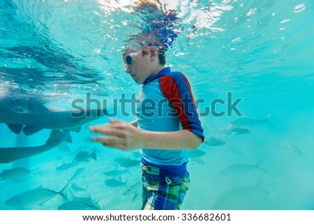 Little boy swimming underwater with nurse sharks and fish - stock photo