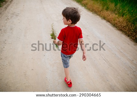 little boy walking in the fields with flowers bouquet for his mother - stock photo