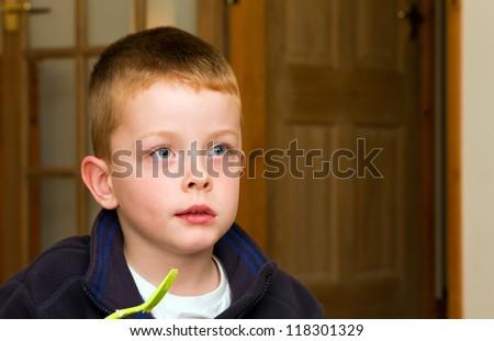 little boy watching TV - stock photo