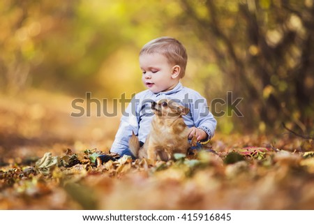 Little boy with a dog playing in the autumn leaves - stock photo