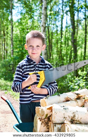 Little boy with a wheelbarrow sawing wood on the village road in the forest - stock photo