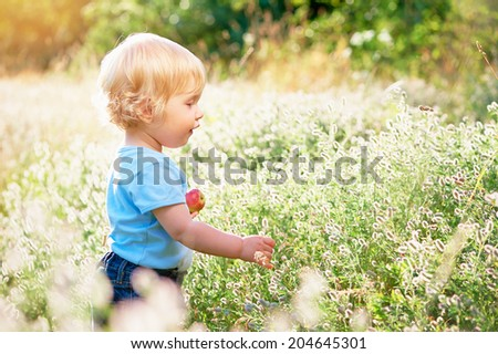 Little boy with apple plays on a green meadow. - stock photo