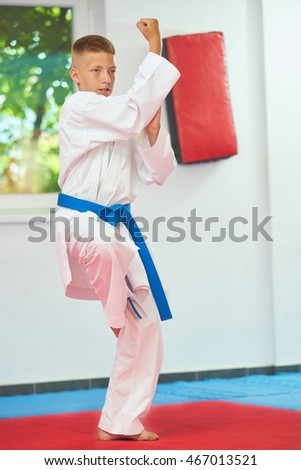 Little boy with blue belt on kimono. Karate.