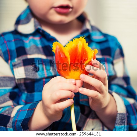 little boy with colorful spring flower