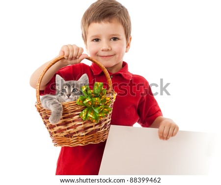 Little boy with empty banner and gray kitty in wicker, isolated on white