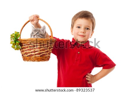 Little boy with gray kitty in basket, isolated on white