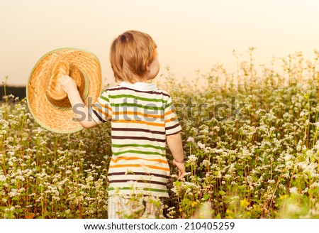 little boy with hat at summer sunset field - stock photo