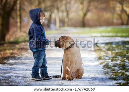 Little boy with his dog in the park, feeding him - stock photo