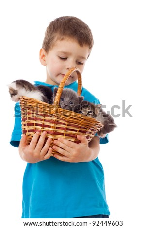Little boy with kittens in wicker, isolated on white