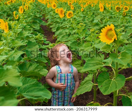 little boy with sunflower in the field - stock photo