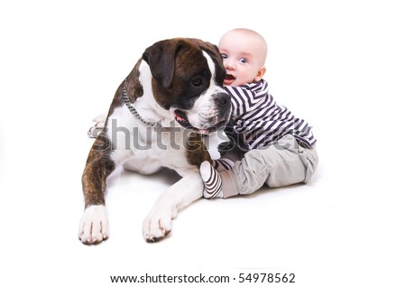 little boy with the big dog - stock photo