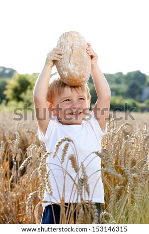 little boy with the bread over your head in the mature grain - stock photo