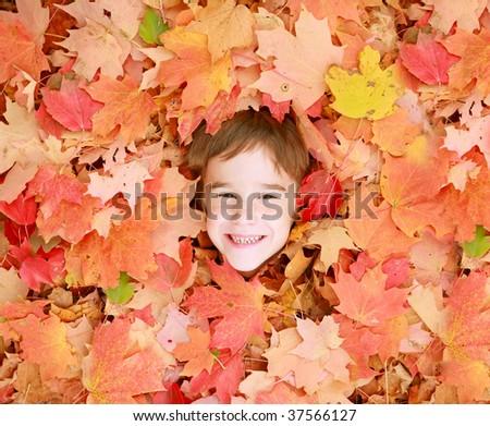 Little Boys Face in Autumn Leaves - stock photo