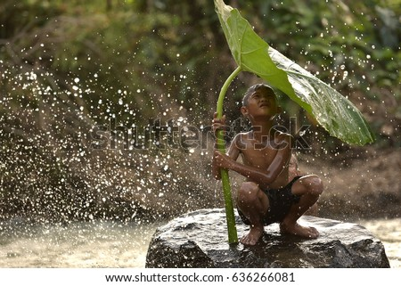 Little boys sitting and playing water under lotus leaf, Asian kid smiling and happiness playing water under lotus leaf after raining day at countryside in Thailand.