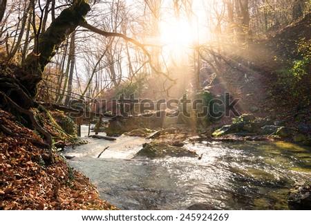 Little bridge through the mountain river in autumn - stock photo