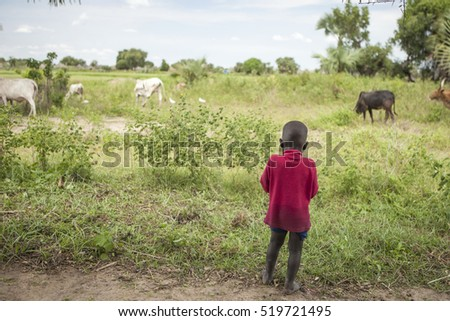 Little child and cattle in South Sudan
