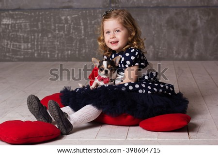 Little child girl is holding small chuhuahua dog - stock photo
