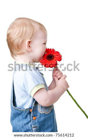 little child is smelling flower. Isolated on white