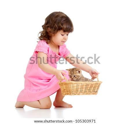 little child playing with Scottish kitten - stock photo