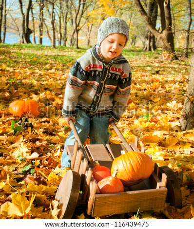 little child with a wheelbarrow full of pumpkin