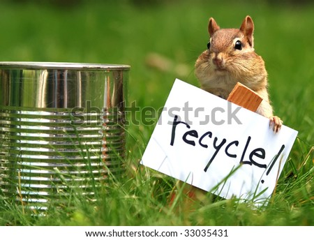 little chipmunk urging us to recycle - stock photo