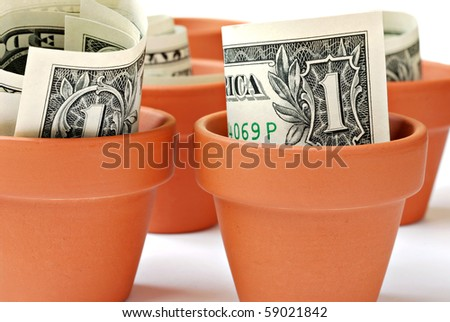 Little clay flower pots with US dollars.  Financial concept of growing money.  Macro with shallow dof. - stock photo