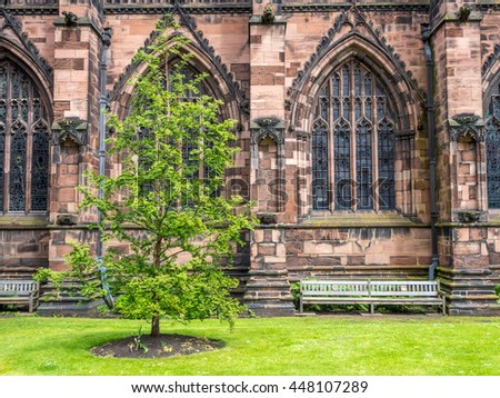 Little corner park and green tree with bench along Gothic stonework of Chester Cathedral in England